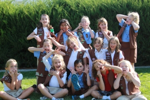 2012-2013 Brownies